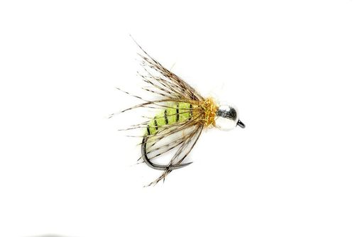 FM Tungsten Grannom Pupa #14 barbless
