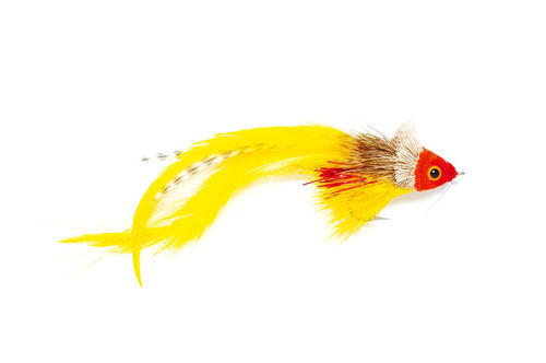 FM Swimming Red Yellow #1/0
